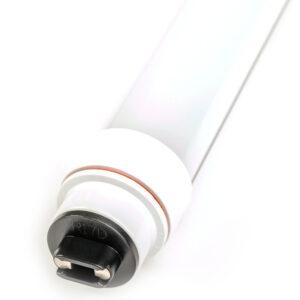 T12HO LED